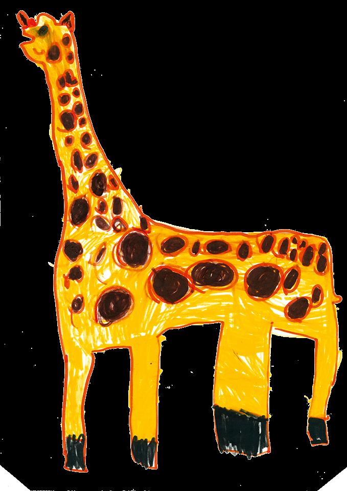 disegno a matita di una giraffa